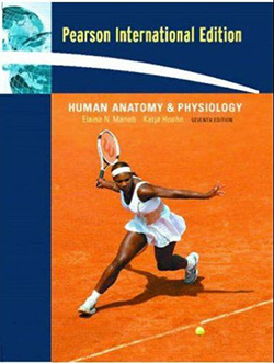Anatomy and Physiology - Marieb