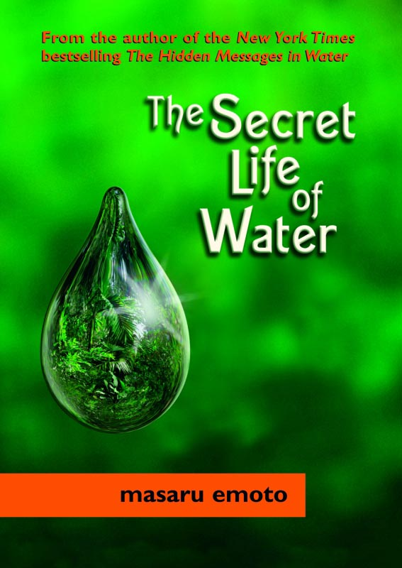 The Secret Life of Water, by Masaru Emoto
