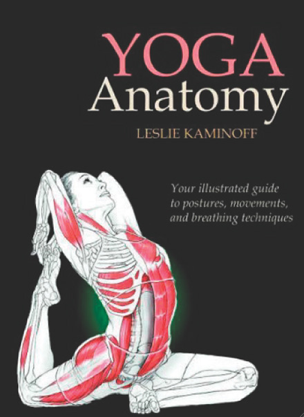 Yoga Anatomy, by Leslie Kaminoff